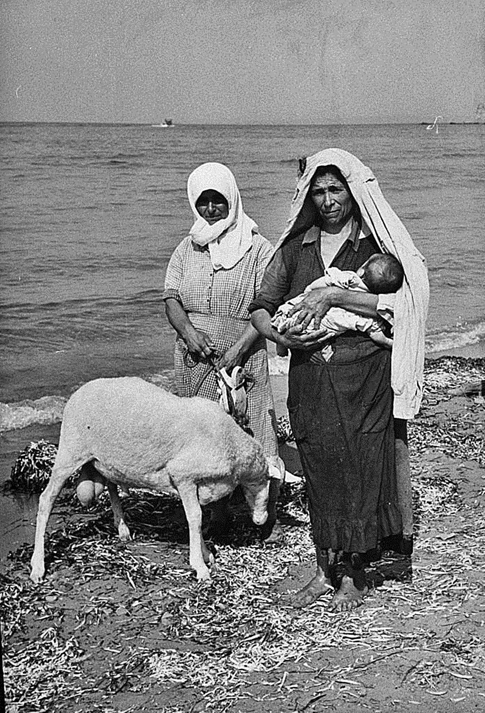 seismoi 1953 2 - 8 σπάνιες φωτογραφίες από τον σεισμό της 12ης Αυγούστου 1953 στη Ζάκυνθο